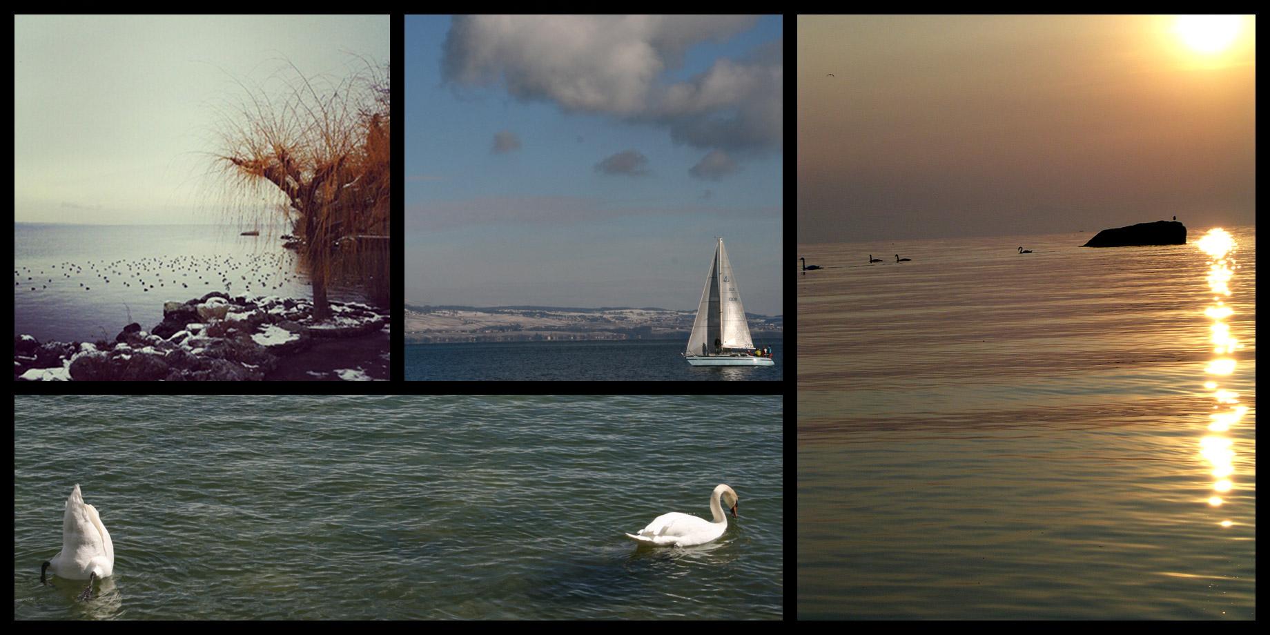 Le Lac Léman - Lac de Genève.
